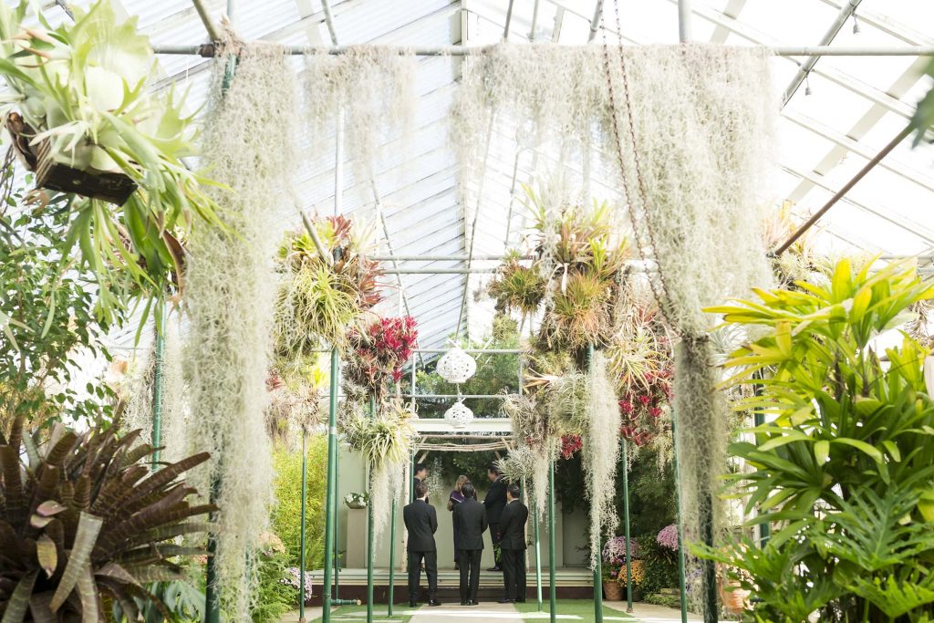 shelldance orchid gardens wedding venue with flowers and plants showing with a groom and groom standing in the distance wearing black tuxes