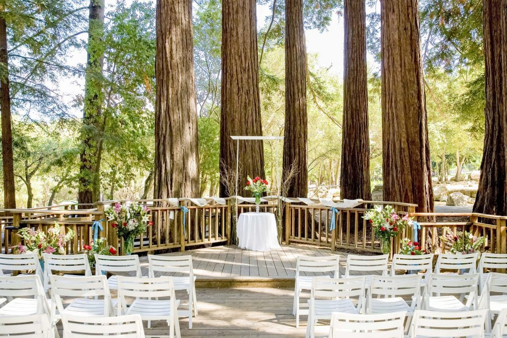 sanborn county park wedding peterson grove white wedding chairs under redwood trees