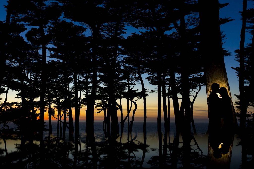 silhouette of couple touching heads against tree at Lands End in San Francisco at dusk