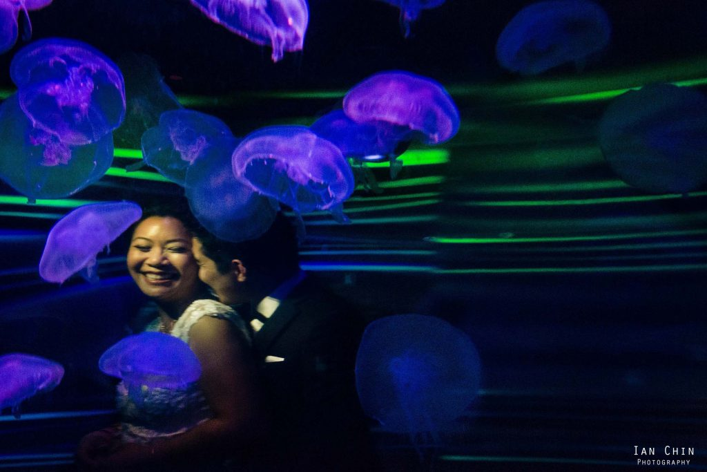 california academy of sciences wedding with bride and groom snuggling behind a glass and jellyfish swimming around them