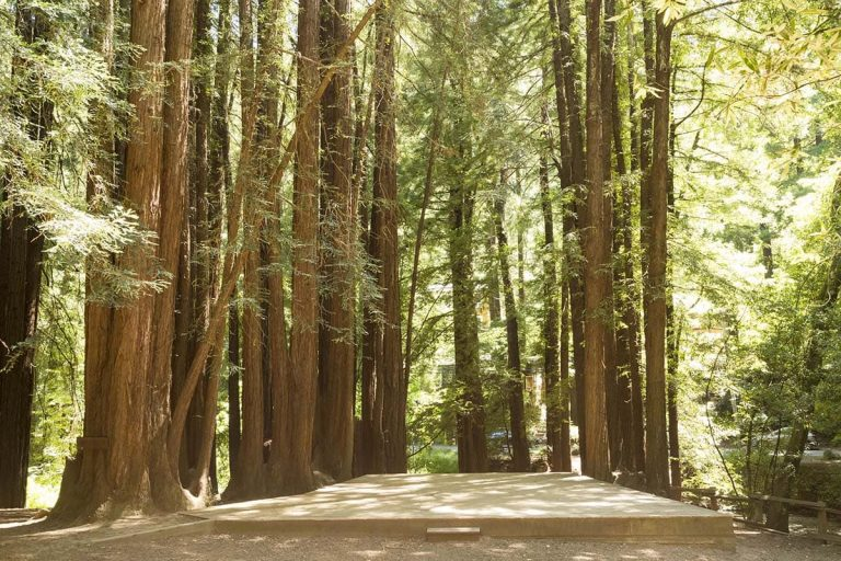 old mill park wedding venue in marin county