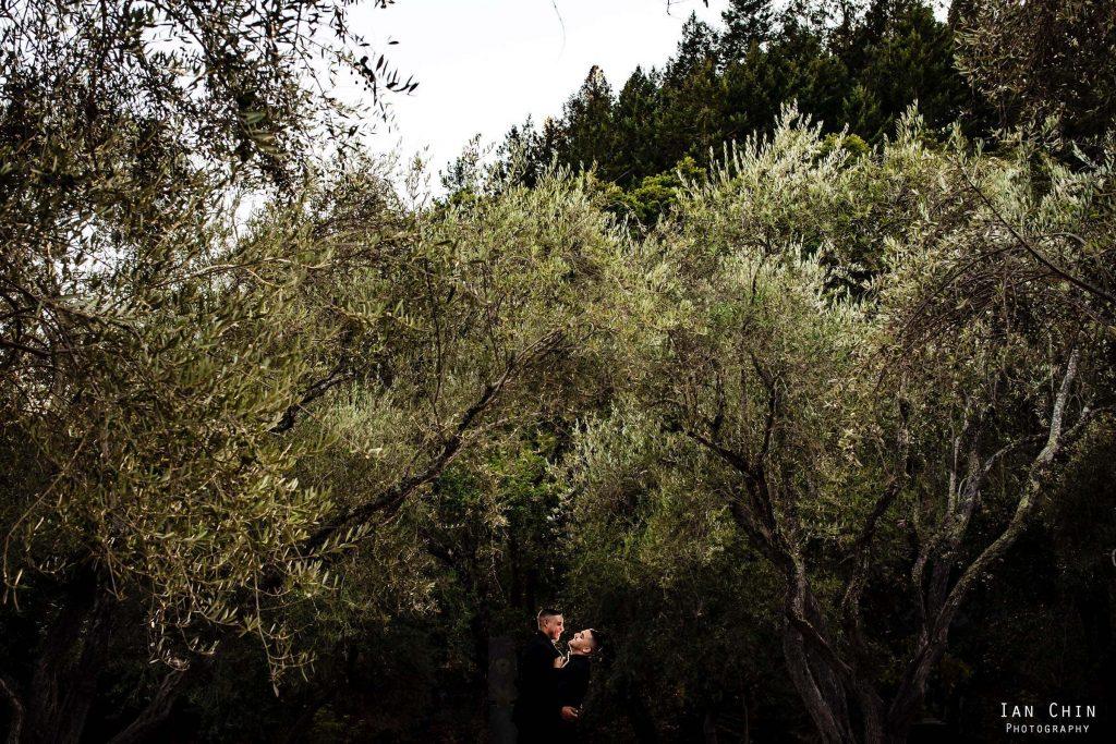 auberge du soleil wedding same sex couple laughing under olive trees
