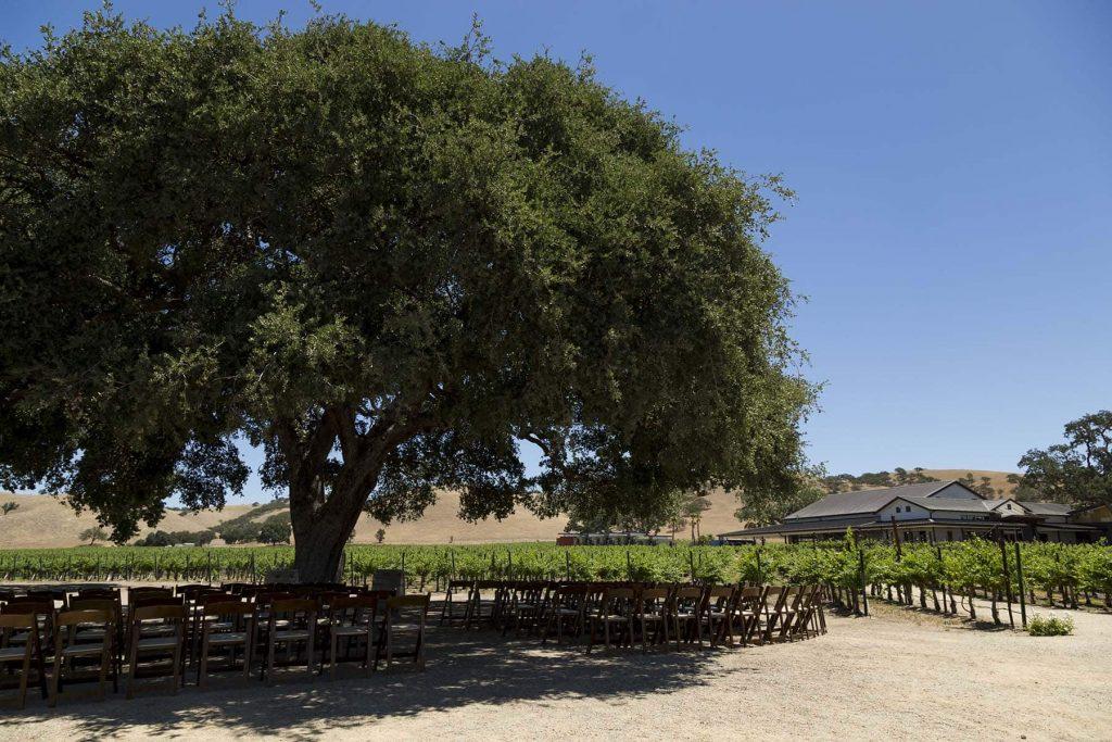Cass Winery Wedding_3 web