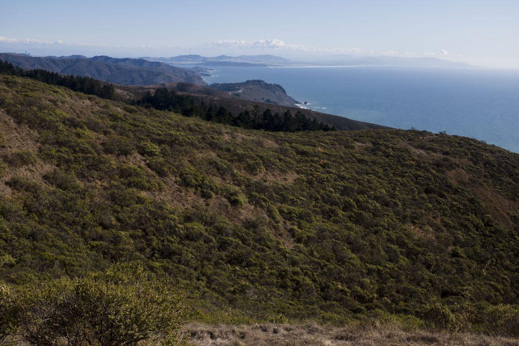 mt tamalpais scenic overlook with pacific ocean in background