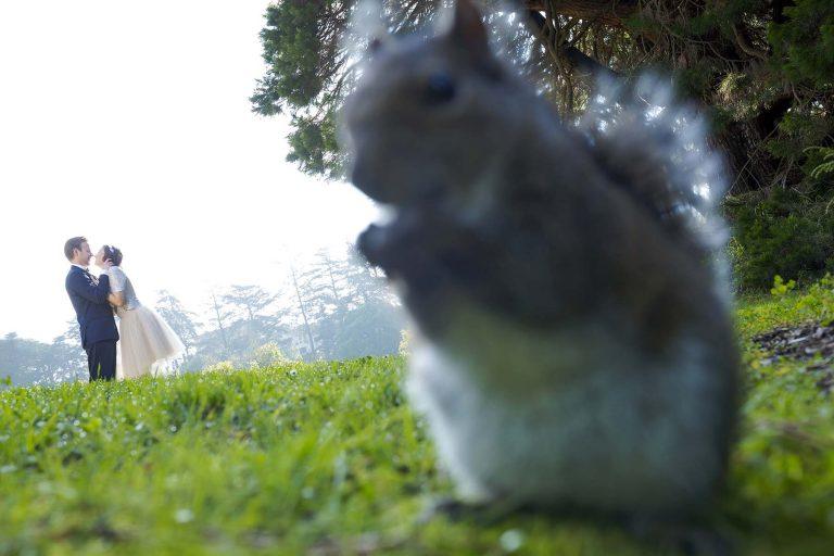 squirrel golden gate park engagement shoot copy1 no review good